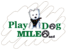 Play Dog Mileo